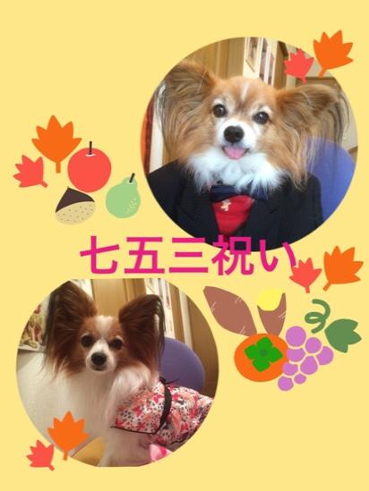 fc2blog_2015111520072604c.jpg
