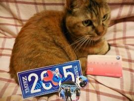 20151115メアと2015