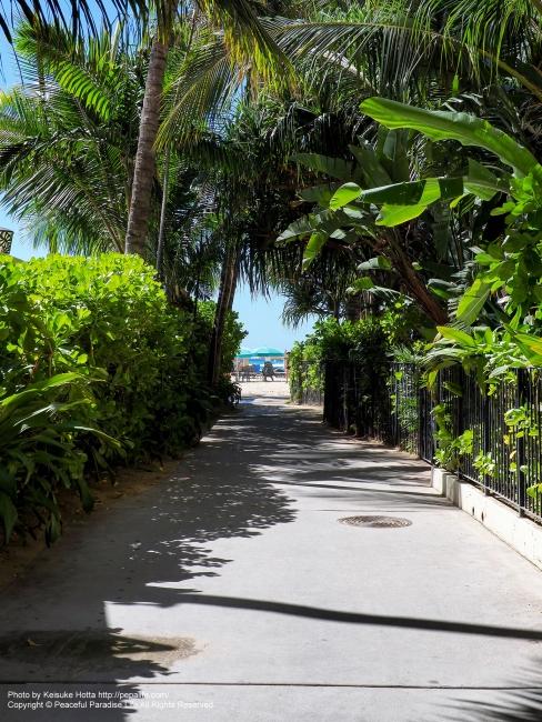 ワイキキビーチへ抜ける小道
