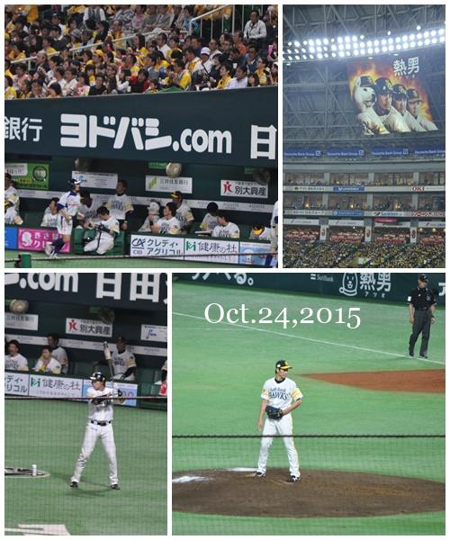 日本シリーズ2015-3