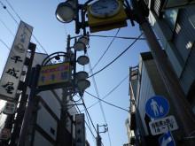 ぴよこの日々つれづれ・・・-TOKYO