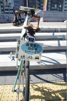 サイクルピクニック