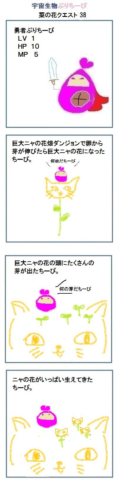 160421菜の花38