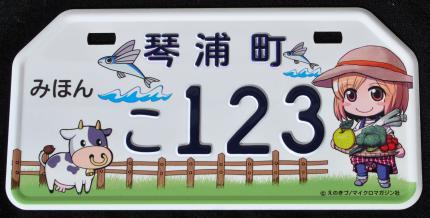 plate_20131202151419000000.jpg