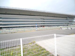 1107fukusima-2.jpg