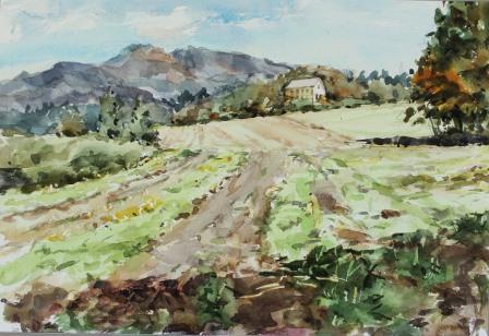 牧場からの眺め