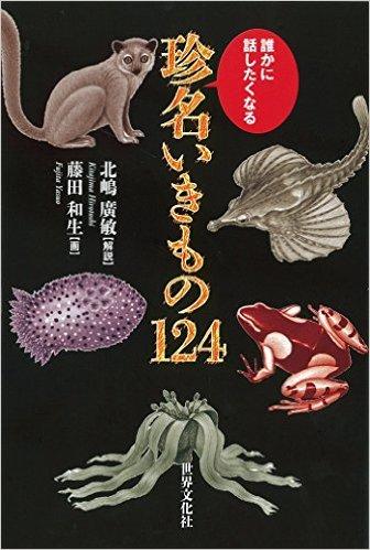 chinmeiikimono124.jpg