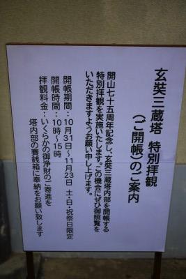P3000681.jpg