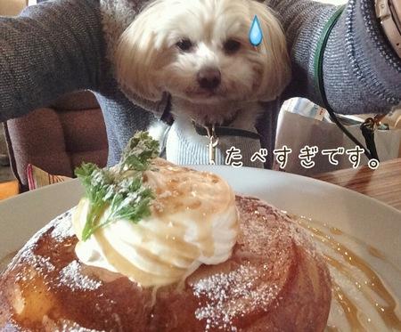 食べすぎおかー
