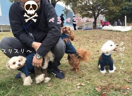 ピョンピョンまーちゃん③