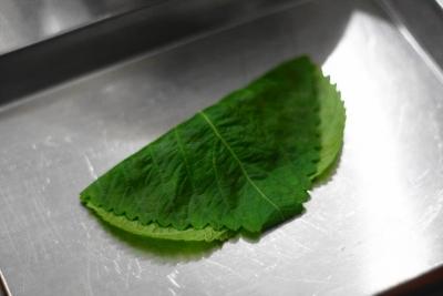 カツオのたたきとエゴマの葉のはさみ揚げ6