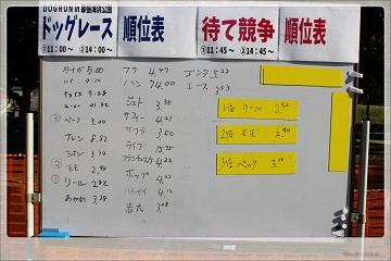 H27102505幕張海浜公園