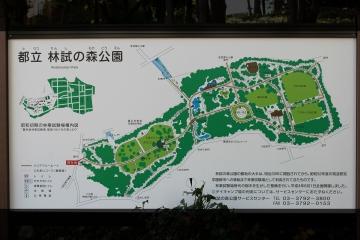H27111606林試の森公園