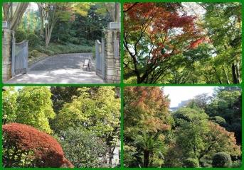 H27111601池田山公園