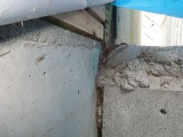 増築部分のシロアリ被害
