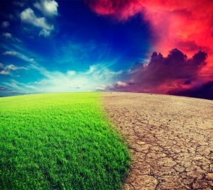 Pause Global warming