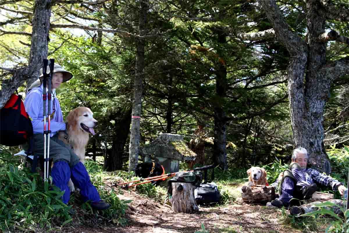 浅間山系捜索犬の旅(86)
