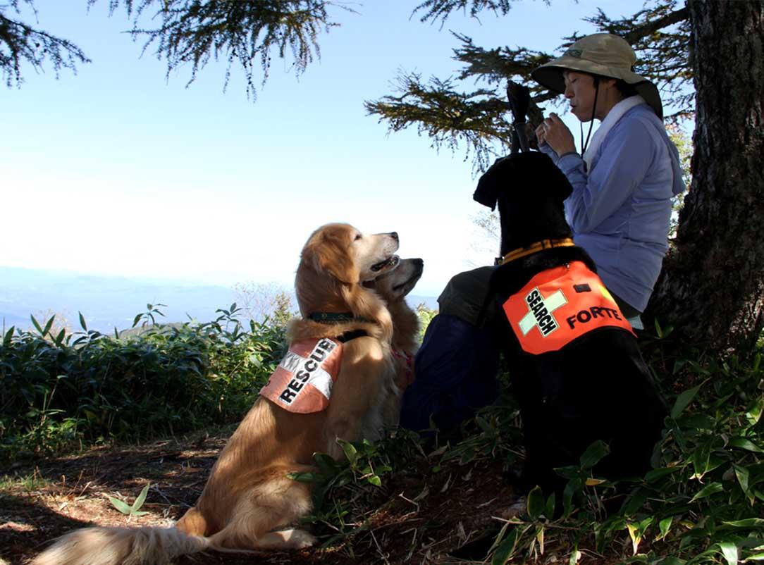浅間山系捜索犬の旅(88)