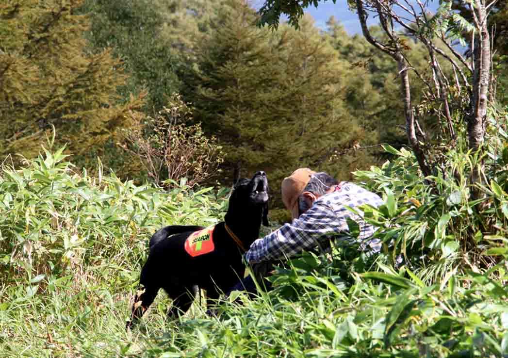 浅間山系捜索犬の旅(90)