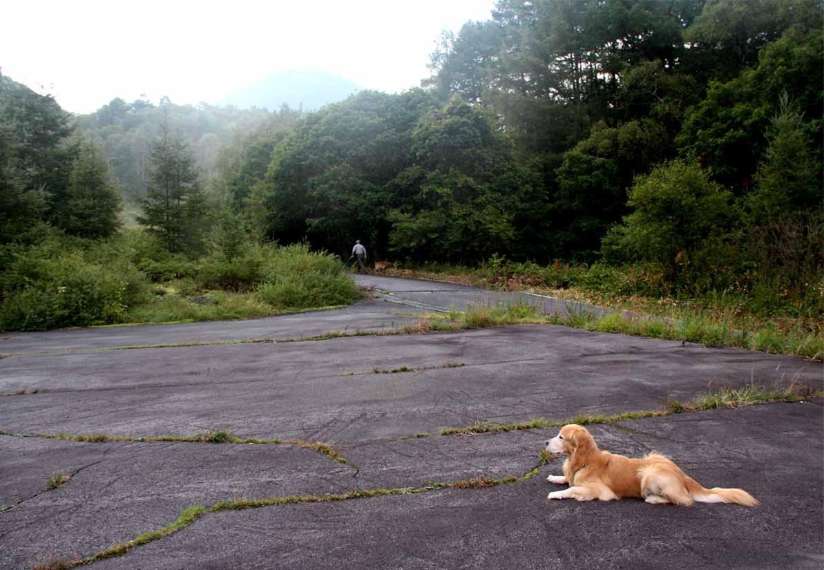 浅間山系捜索犬の旅(101)