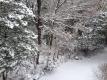 2016.1.20雪景色