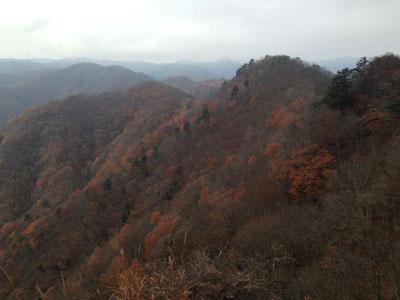 15111303シラケ山