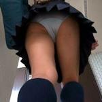 「ストレスから盗撮しました」 女子高生のスカートの中を盗撮した神奈川県警巡査部長を現行犯逮捕