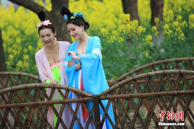 中国茶摘娘 6