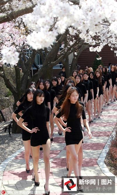 韓国モデルクラス女子大生 ウォーキング授業画像 2