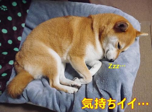 2ベッド気持ちイイ