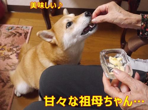 5甘々祖母ちゃん
