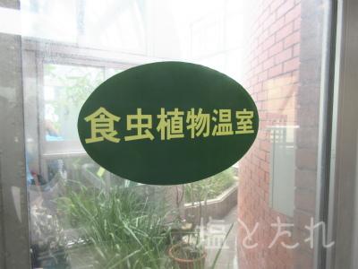 IMG_2159_20151021_01_夢の島熱帯植物館