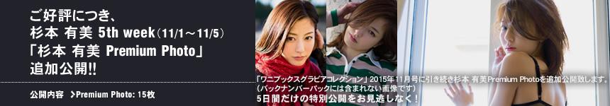 ワニブックス グラビアコレクション 2015年11月杉本有美Premium Photo