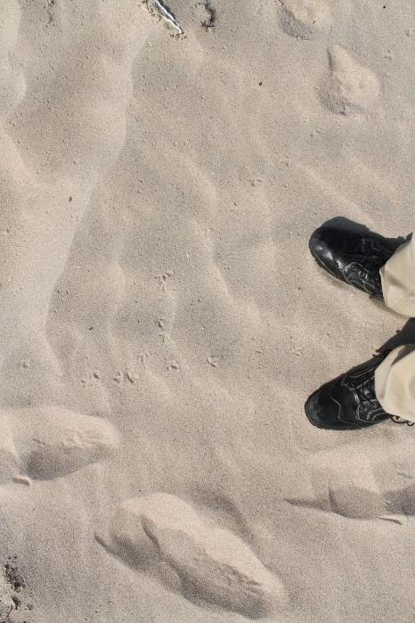 44鳴き砂3