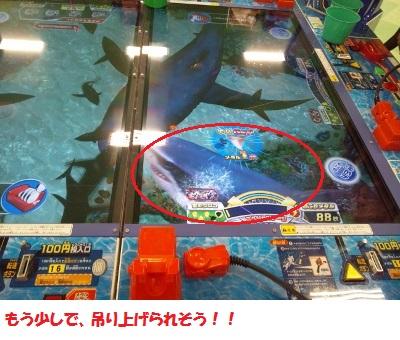暴れるサメ3 (400x300)