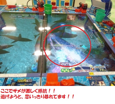 暴れるサメ4 (400x300)