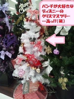 2015クリスマスツリー (300x400)