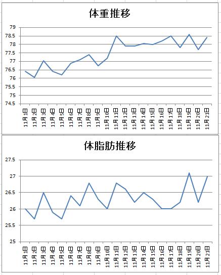 11月体重推移グラフなど