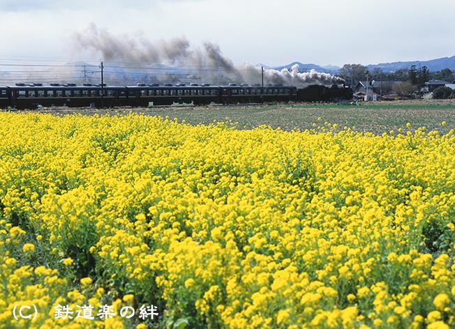 020324永田