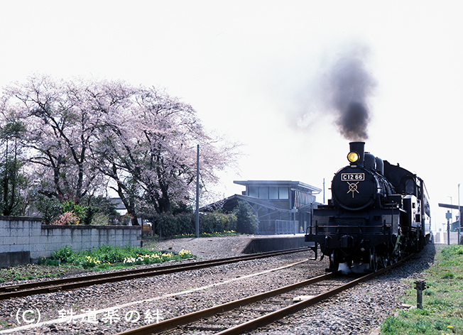 020403七井