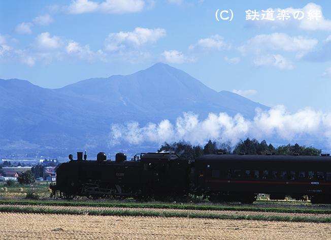 031019新鶴