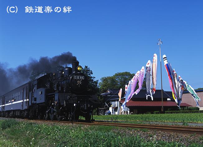 040429七井