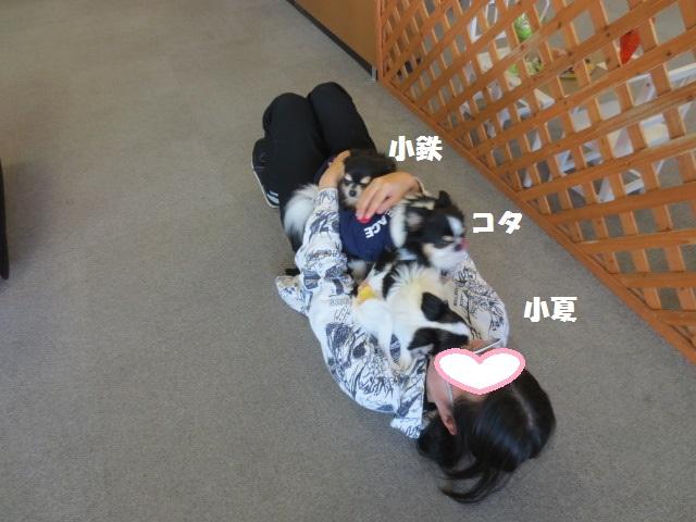 IMG_2181遊び2