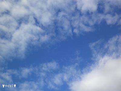 今日の空。。