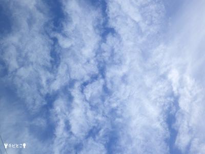 きょうの空。。