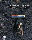 LinC0087neko.jpg