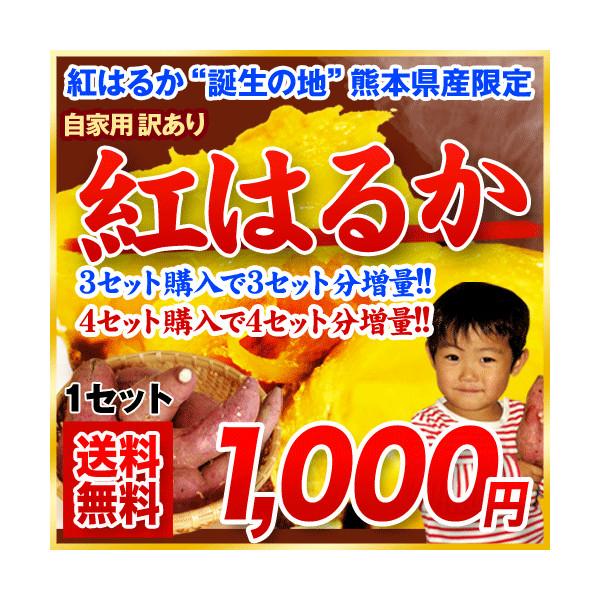 kumamotofood_beharuka-1kg.jpg