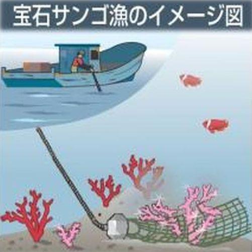 pp___宝石サンゴが標的 領海に一攫千金狙う中国漁船