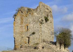 torre-de-pajarete1.jpg