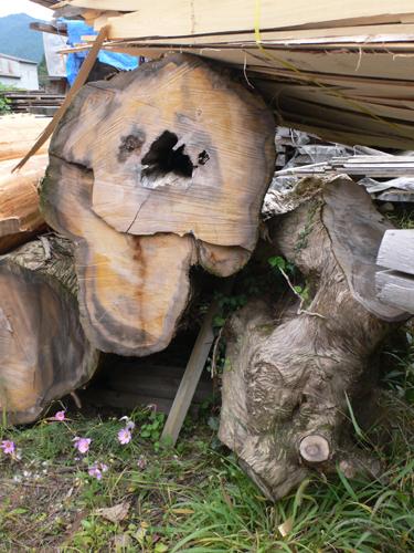 01木材151031